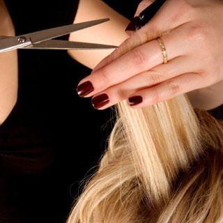Salon and Beauty Cut Work