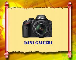 Dani Gallery