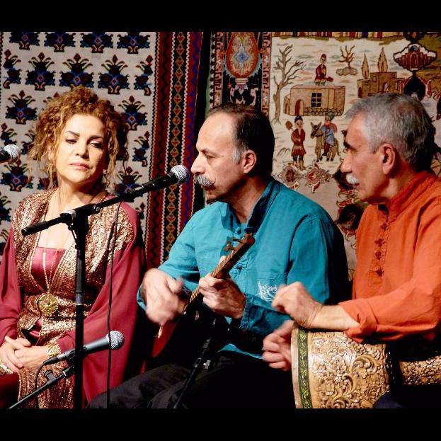 انجمن موسیقی ایرانی